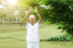 Arts martiaux de pratique de personnes âgées en parc Photographie stock