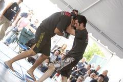 Arts martiaux mélangés d'IMB Photos libres de droits