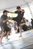 Arts martiaux mélangés d'IMB Photo stock