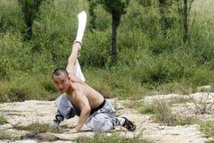 Arts martiaux?.sabre. Images libres de droits