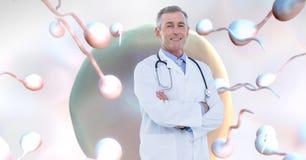 Arts met de eierstok van de spermareproductie voor geboortenregeling stock illustratie