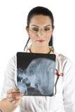 Arts met hoofdröntgenstraal Royalty-vrije Stock Afbeelding