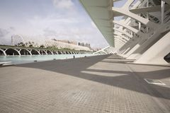 Arts and Science Museum-Valencia Royalty Free Stock Photos