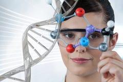 Artsenvrouw die een medisch cijfer met 3D DNA-bundel houden Stock Afbeeldingen