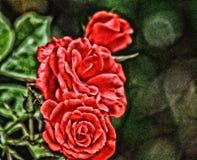 Artsy rosso delle rose fotografia stock