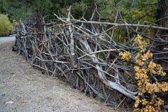 Artsy Twiggy Fence Stock Photography