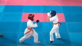 Żartuje karate rywalizację zbiory wideo