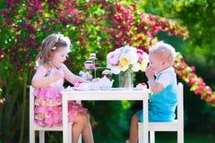 Żartuje rodzeństwa ma zabawę przy ogrodowym herbacianym przyjęciem Fotografia Stock