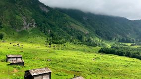 Gorgit highland with old houses and green valley in Blacksea region, Artvin, Turkey stock footage