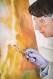 Artwork conservator at work Stock Photography