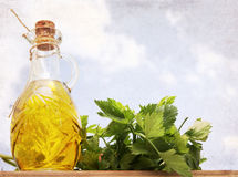 Artwork  in grunge style,  olive oil and celery Stock Photos