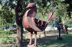 Artwork made by waste iron material. Iron Bird- Artwork made by waste iron material in Bhopal, India stock photos