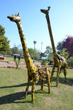 Artwork made by waste iron material. Giraffe- Artwork made by waste iron material in Bhopal, India royalty free stock photo