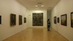 Artwork, Paintings, Museum Exhibits stock video