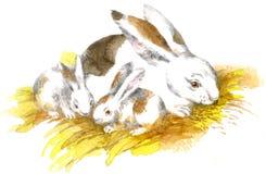 "Artwork ""Rabbits"" stock images"