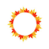 Artwork with red and yellow maple leaves Stock Photos