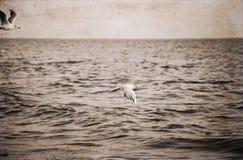 Artwork in retro style, sea Royalty Free Stock Photo