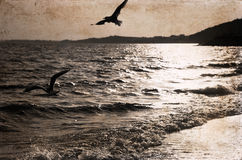 Artwork in retro style, sea Royalty Free Stock Images