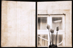 Artwork  in retro style,  window Stock Photography