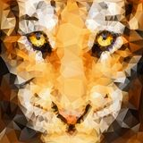 Artwork of tiger cub. Head from front view Stock Images