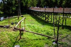 Artykuł wstępny - Lipiec 29, 2014 przy Parc safari, Quebec, Kanada na b Zdjęcia Royalty Free