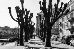Artykuł wstępny: 25th Marzec 2017: Strasburg, Francja Wiosny ulica Obraz Stock
