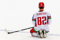 Artyom Senkevich Stock Foto