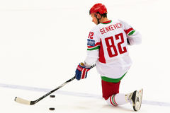 Artyom Senkevich at IIHF WC 2010 Royalty Free Stock Photo