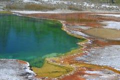 Artysta farby garnek w Yellowstone Fotografia Royalty Free