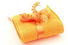 artystyczna torby łęku kanwa Zdjęcie Stock