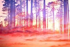 Artystyczny CVI Ścienna sztuka HQ - Marzycielski chmura las - druk Przygotowywający - royalty ilustracja