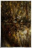 artystyczny drzewo Obrazy Royalty Free