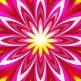 artystyczny kwiat Fotografia Royalty Free