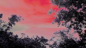Artystyczny Mawwdach - wersja 1 fotografia royalty free