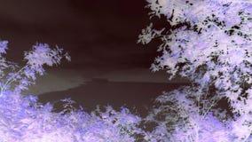 Artystyczny Mawwdach - wersja 6 zdjęcie stock