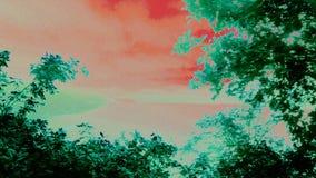 Artystyczny Mawwdach - wersja 5 zdjęcie royalty free