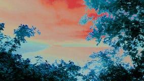 Artystyczny Mawwdach - wersja 3 obraz royalty free