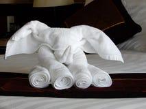 Artystyczny Ręcznikowy falcowanie zdjęcie stock