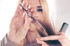 artystyczny tnący włosiany hairdress ilustraci wektor Obraz Royalty Free