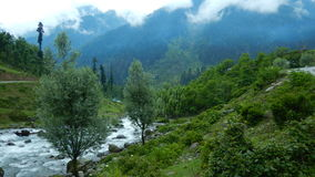 Aru valley in Pahalgam-7. A beautiful scene of a greenery of a farmland and a flowing water in Kashmir Royalty Free Stock Photo