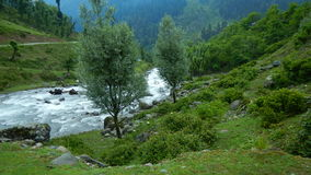 Aru valley in Pahalgam-4. A beautiful scene of a greenery and flowing water in a valley of Kashmir Royalty Free Stock Photo