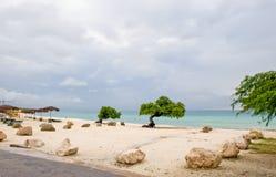 aruba海滩 免版税图库摄影