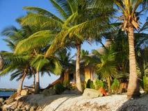 Aruba Royalty-vrije Stock Foto's