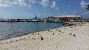 Aruba, Aruba Obrazy Stock