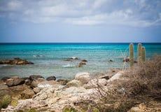 Aruba coastline with cactus. Aruban coastline wiht cactus and scrub brush on the shoreline with blue sky on the horizon Stock Photography