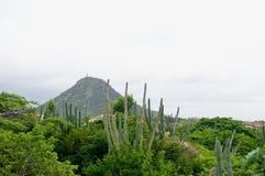 Aruba-karibische Insel lizenzfreies stockfoto