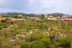 Aruba-Landschaft Lizenzfreie Stockfotos