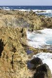 Aruba norr kust royaltyfri fotografi