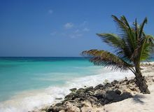 Aruba 0997 Stock Image
