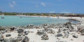 Aruba, plage de bébé, sur la mer des Caraïbes Images libres de droits